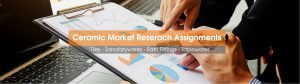 Ceramic Industry Market Research Agency in India